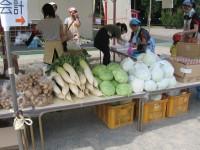 新鮮野菜が超お買い得!じゃがいもは農園で採れたもの。