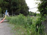 草が全くないきれいな園庭は子どもの生活の場としてはふさわしくありません