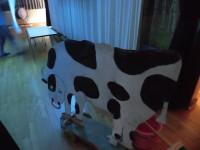 彦星の牛。20年モノ